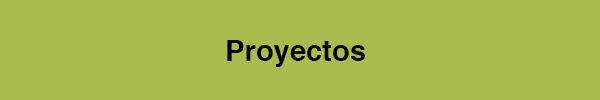 Proyectos 21